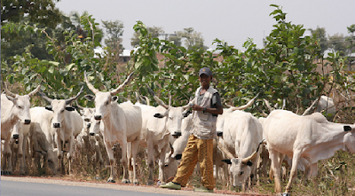 Provisions of the proposed bill to establish a ranching commission in Nigeria