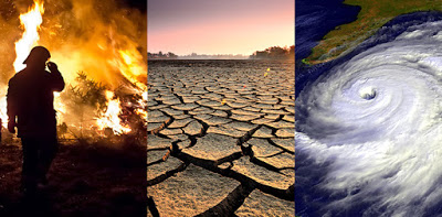 Exploring The Capital Market In Combating Climate Change |  Christopher Nwuya.